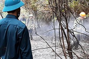 Khống chế hoàn toàn 3 điểm cháy rừng tại Quảng Nam