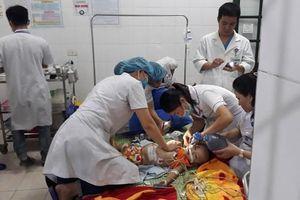 Nghệ An: Bé gái 22 tháng tuổi tử vong vì bị chó tấn công