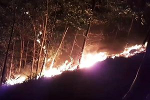 Rừng ở Quảng Nam đang chìm trong biển lửa