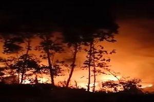 Chưa dập tắt đám cháy rừng phòng hộ Núi Ngang sau hai ngày bùng phát
