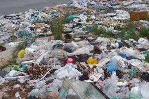 Bãi rác 'khủng'