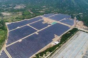 Tìm giải pháp để nhà máy điện mặt trời phát huy hết công suất
