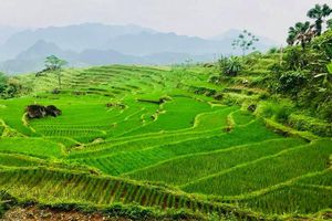Pù Luông - 'Thiên đường xanh' ở xứ Thanh