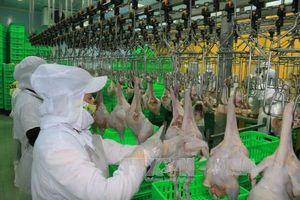 EVFTA sẽ tạo cú hích cho Việt Nam về chất lượng hàng hóa