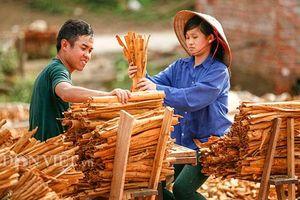 Quảng Ninh: Ở đây dân í ới gọi nhau đi làm từ tờ mờ sáng, càng nắng càng vui