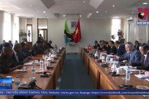 Phó thủ tướng Trịnh Đình Dũng hội đàm với Thủ tướng Tanzania