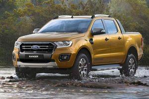 Phân khúc xe bán tải tháng 6/2019: 'Vua bán tải' Ford Ranger vững ngôi đầu