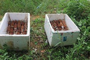 Tháo gỡ thành công hầm đạn cối dưới chân đèo Bảo Lộc