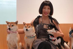 Quán cà phê chó Shiba hút khách ở Bắc Kinh
