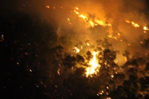 Cháy núi Bà Hỏa giữa đêm, hàng trăm hộ dân Quy Nhơn hoảng loạn