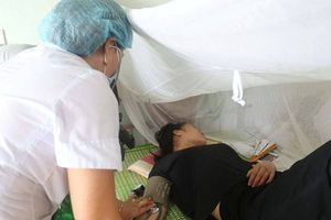 6 người tử vong do sốt xuất huyết: Bộ Y tế chỉ đạo khẩn