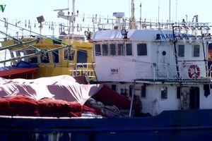 Gia tăng nợ xấu từ chương trình vay vốn tàu đóng tàu theo Nghị định 67