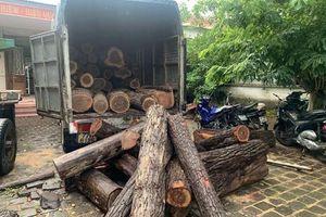Bí mật đằng sau vụ hàng chục xe ô tô ùn ùn chở gỗ lậu 'tàng hình' qua chốt kiểm lâm