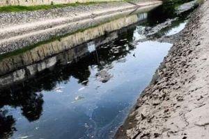 Nước sông Tô Lịch lại đen kịt, cá chết nổi lềnh bềnh