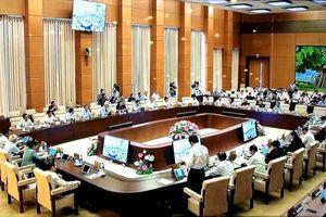UBTVQH cho ý kiến việc sửa đổi 2 luật về tổ chức chính quyền