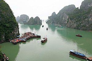 Đình chỉ tàu hoạt động trên vịnh Hạ Long vì bị 'tố' quay trộm du khách