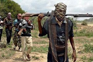 300 tay súng tấn công một ngôi làng ở Tây Bắc Nigeria, nhiều người thương vong