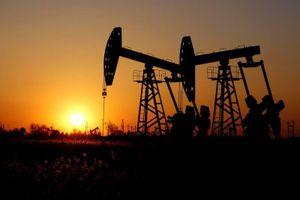 Tổng hợp diễn biến thị trường dầu mỏ thế giới tuần qua