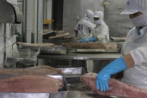Doanh nghiệp thủy sản kiến nghị giãn tăng lương tối thiểu