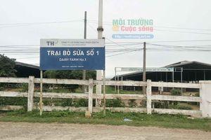 Nghệ An – Bài 3: Trang trại bò sữa TH True Milk tiếp tục gây ô nhiễm nặng nề, lãnh đạo tỉnh Nghệ An thờ ơ