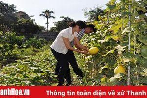 Các cấp hội nông dân tăng cường công tác kiểm tra, giám sát