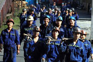 Thợ lò của TKV tăng trên 500 lao động