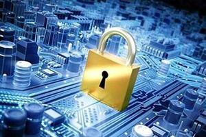 Chưa có cơ quan, tổ chức Nhà nước nào an toàn thông tin ở mức độ tốt