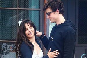 Shawn Mendes và Camila Cabello bị nghi giả vờ yêu nhau để PR