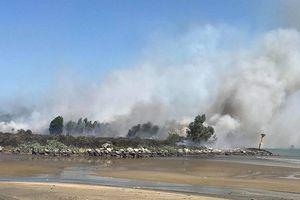Kịp thời dập tắt đám cháy lớn trên bán đảo Sơn Trà giữa trưa