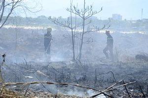 Đà Nẵng: Cháy rừng trên núi Sơn Trà, hàng trăm chiến sĩ dập lửa
