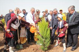 Ý tưởng ngày trồng cây được tổng thống và cư dân mạng hưởng ứng