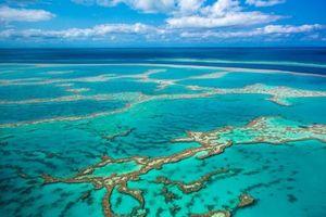 Một số đảo đá ngầm ở Thái Bình Dương có thể thay đổi hình dạng