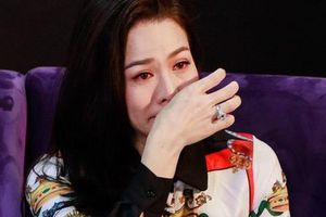 Ca sĩ Nhật Kim Anh hủy nhiều show vì bị trộm khoắng sạch két sắt hơn 5 tỷ