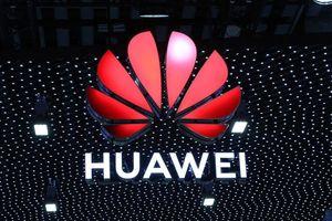 Nghị sĩ Mỹ không muốn Huawei thoát danh sách đen