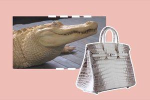 Vì sao túi Hermès Himalaya Birkin có giá đến 12 tỷ đồng?
