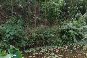 Phát hiện thi thể đang phân hủy trong rừng keo ở Quảng Nam