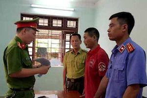 Hà Tĩnh: Vụ cháy rừng ở Hương Sơn, khởi tố thêm 3 đối tượng