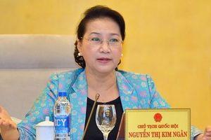 Chủ tịch Quốc hội: 'Khẩn trương hoàn thiện đảm bảo chất lượng các dự án Luật'