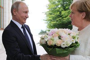 Tổng thống Putin chúc mừng Thủ tướng Merkel nhân dịp sinh nhật lần thứ 65