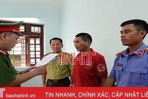 Bắt giam 3 đối tượng đốt ong gây cháy rừng ở Hà Tĩnh