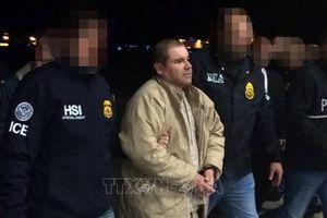 Trùm ma túy El Chapo bị phạt tù chung thân