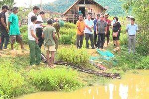 Tắm ao sâu trước nhà, 4 em nhỏ trong cùng một gia đình đuối nước tử vong