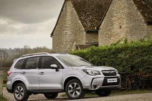 Subaru Foresrter về Việt Nam, 'quyết đấu' Honda CR-V, Mazda CX-5