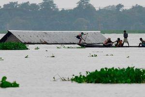 Hơn 100 người chết do mưa lũ tại Nam Á