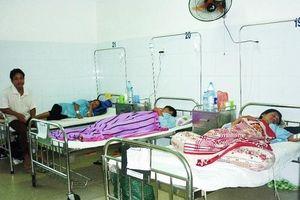 Đà Nẵng: Triển khai thực hiện các biện pháp chống bệnh sốt xuất huyết