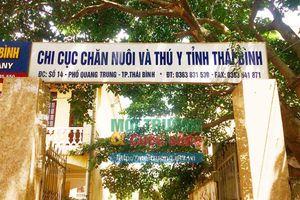 Vụ lợn giống dính vi rút dịch tả lợn Châu Phi từ công ty TNHH Japfa Comfeed Việt Nam (Bài 2): Chi cục Chăn nuôi và Thú y tỉnh Thái Bình khẳng định đã làm đúng quy trình?
