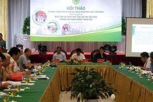 Hội thảo 'Lý luận và thực tiễn trong xây dựng nông thôn mới ở Việt Nam'