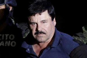 Trùm ma túy Mexico lĩnh án tù chung thân và nộp phạt 12,6 tỷ USD