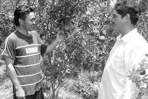 Góp sức giảm nghèo ở vùng duyên hải Trà Vinh