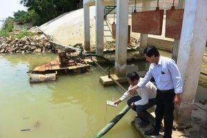 Quảng Nam: Hạn, mặn xâm nhập, nguy cơ mất trắng vụ mùa